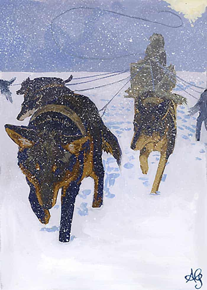 Sled dogs in winter storm painting by Adam Gustavson.